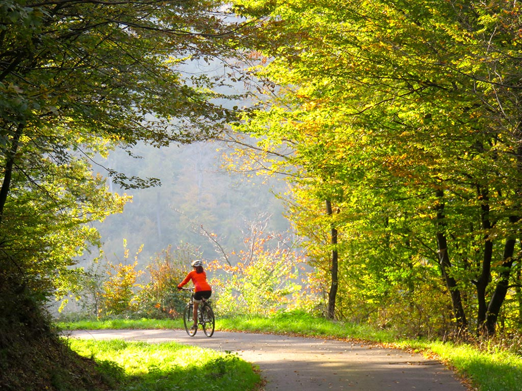 Cycling tours Best of Danube-Hungary - cycling in the Borzsony